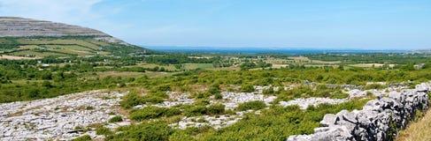 burren den ireland nationalparken Arkivbilder