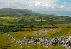 The Burren fields Royalty Free Stock Photos