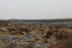 The Burren is a interesting landscape in County Clare, Ireland Royalty Free Stock Image