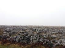 Burren, Ireland. The Burren is a interesting landscape in County Clare, Ireland Stock Photos