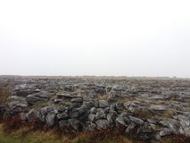 Burren, Irlandia Zdjęcia Stock