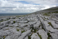 The Burren Royalty Free Stock Photos