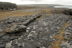 The Burren Landscape, Co. Clare - Ireland. The Burren (Irish: Boireann, meaning great rock) is a karst-landscape region or alvar in northwest County Clare, in Royalty Free Stock Photography