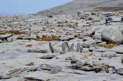 Burren landscape with tones of great rocks. Breathtaking view of the Burren national park Royalty Free Stock Image