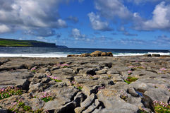 Burren limestone beach by west coast of ireland Stock Image