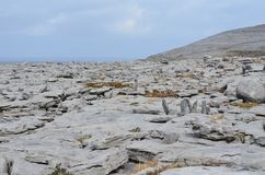 In the Burren national park white rock landscape. In the Burren national park with white rocks all over the landscape Stock Photo