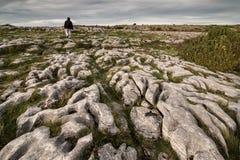 Burren, okręg administracyjny Clare Obrazy Royalty Free