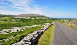 burren skyddat västra för den ireland ligganden limestone Arkivfoto