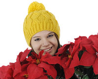 Burried in Poinsettias Royalty Free Stock Images