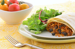 Burrito de poulet et de haricot noir Image libre de droits