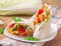 Burrito met kip, bonen en tomaten stock foto