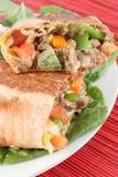 Burrito mexicano do bife fotografia de stock royalty free
