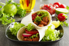 Burrito mit Schweinefleisch Lizenzfreies Stockbild