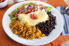 Burrito Plate Stock Images