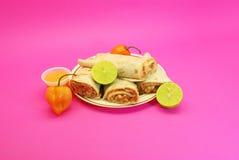 Burritos del pollo, peperoncino rosso Fotografia Stock Libera da Diritti