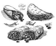 Burritos, tacos on white background. fast food Stock Image