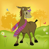 The burro Royalty Free Stock Photography
