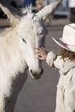 Burro com criança Foto de Stock