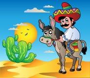 Burro mexicano del montar a caballo en desierto Fotos de archivo libres de regalías