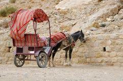 Burro y carro en el Petra fotografía de archivo