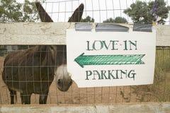 Burro y cerca con la muestra para las direcciones a casarse el estacionamiento, Ojai, CA Imágenes de archivo libres de regalías