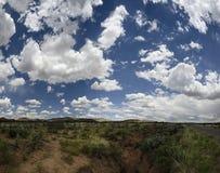 Burrone del deserto Immagini Stock Libere da Diritti