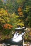 Burrone di autunno Fotografie Stock