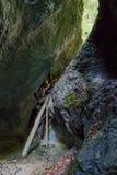 Burrone di Kysel nel parco nazionale slovacco di paradiso, Slovacchia Immagine Stock