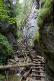 Burrone di Kysel nel parco nazionale slovacco di paradiso, Slovacchia Fotografie Stock