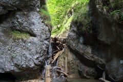 Burrone di Kysel nel parco nazionale slovacco di paradiso, Slovacchia Fotografia Stock