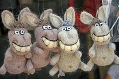 burros Foto de Stock