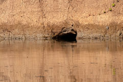 Burrow on the water edge, Nepal Stock Photos