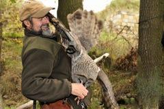 Burrowing owl,Athene cunicularia. Royalty Free Stock Image