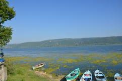 Bursa golyazi lake. Golyazi lake landscape lotus flowers Stock Images
