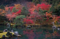 Tenryu-ji temple in Kyoto, Japan. royalty free stock photography