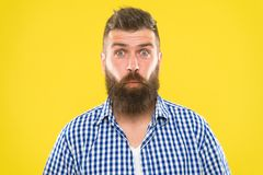 Burst of laughter. Hipster with beard and mustache emotional surprised expression. Rustic surprised macho. Man bearded. Hipster wondering face yellow background royalty free stock images