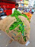BURSTING GREEN PEPPERS,RAJASTHAN,INDIA. A man balancing a hessian sack on a bicycle bursting with green peppers in ,rajasthan,india Royalty Free Stock Images