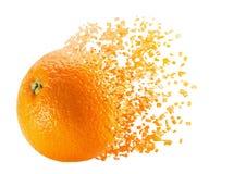 Bursting orange isolated on the white background.  Stock Photo