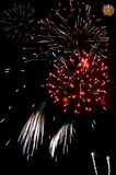 Bursts of fireworks Royalty Free Stock Photos