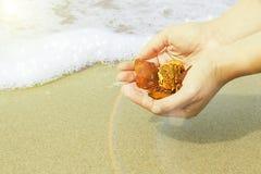 Bursztyn w ręce z jaskrawym odbiciem na palmie przeciw tłu morze Zdjęcie Royalty Free