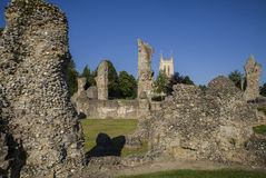 Bury St. Edmunds Abbey Remains and St Edmundsbury Cathedral. A view of the remains of Bury St Edmunds Abbey and St Edmundsbury Cathedral in Bury St. Edmunds Royalty Free Stock Image