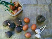 Buryak, garlic, onion, potato vegetables and chicken eggs Stock Photos