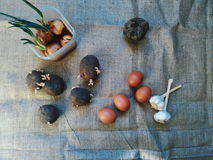 Buryak, garlic, onion, potato vegetables and chicken eggs Stock Photography