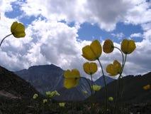 Buryatia baikal Shumak przepustka 2760 metrów obraz stock