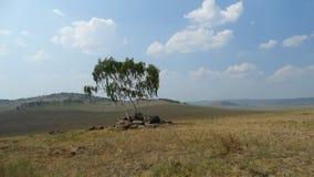 Buryatia Tugnui dolina Zdjęcie Royalty Free