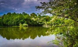 Burz chmury nad Centennial jeziorem przy Centennial parkiem w Kolumbia zdjęcia royalty free