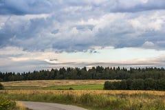 Burz chmury nad lasem Obraz Stock