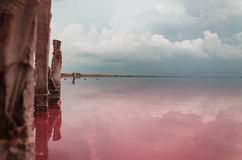 Burz chmury nad słonym różowym jeziorem Obrazy Royalty Free