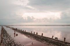 Burz chmury nad słonym różowym jeziorem Zdjęcie Stock