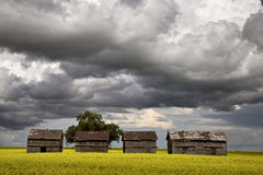 Burz chmury Saskatchewan fotografia royalty free
